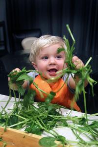 happy kid snack